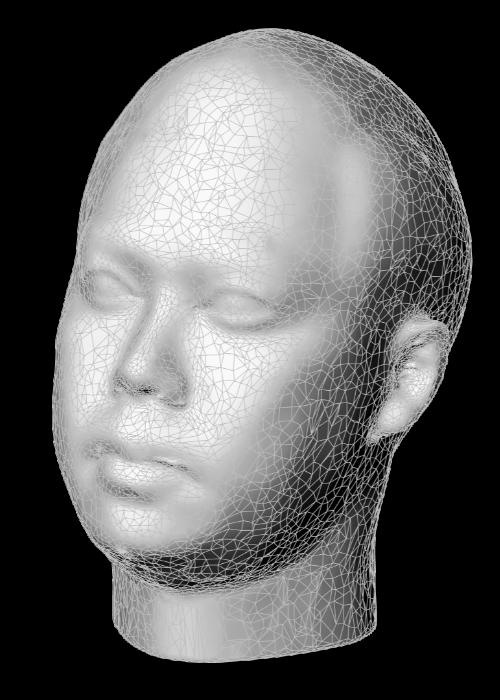 3D Head Scanning